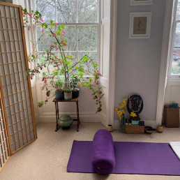 Yoga-Kula-Home-Classes